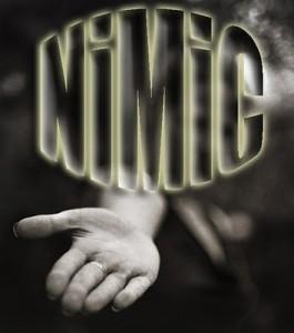 NIMIC-expresiv-265x300
